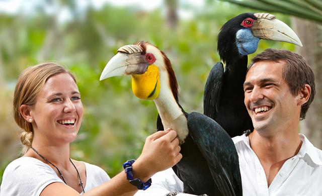 Get Bali Bird Park ticket